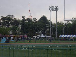 IMGP2981